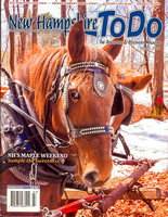 nh-todo-cover-march-13_8512056978_o