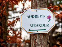 Audrey's Sign, Friedsam Forest, Chesterfield, NH